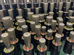 韩国进口氮气弹簧